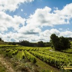 remy_france_pic-401
